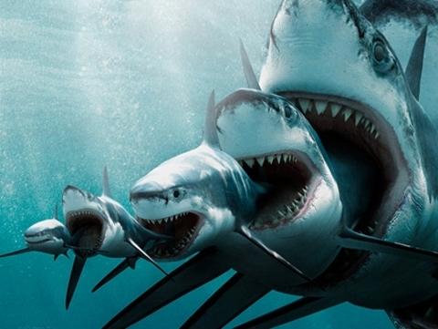 Акулы капитализма съедают средний и мелкий бизнес